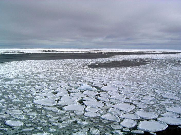 Sea ice in the ocean surrounding the Ross Sea in 2017.