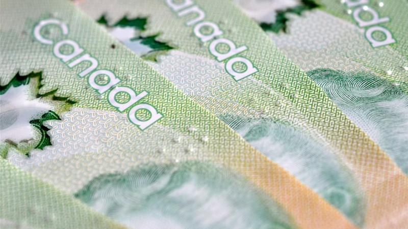 A close up image of Canadian $20 Dollar bills