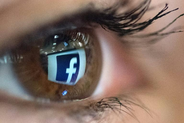 Facebook's stellar earnings came as regulators in the United States and abroad threaten to crack down on Internet giants they fear have become too powerful