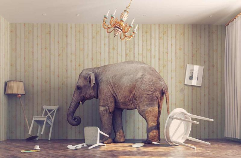 The Elephant in the Room: Your Adviser Is Getting Paid