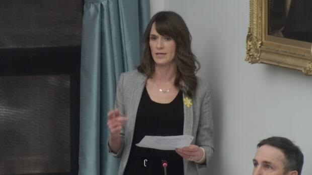 Education Minister Natalie Jameson says government provided some funds to centres that wanted to expand last year, and more support will be offered this year.