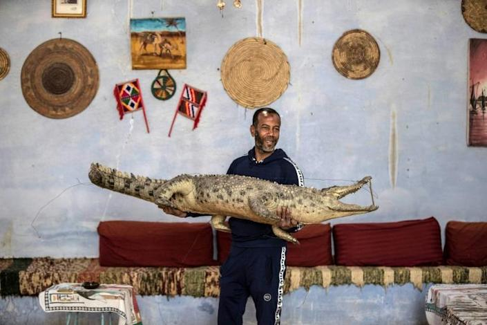 Mamdouh Hassan holds a taxidermied crocodile at his home in Gharb Soheil (AFP Photo/Khaled DESOUKI)