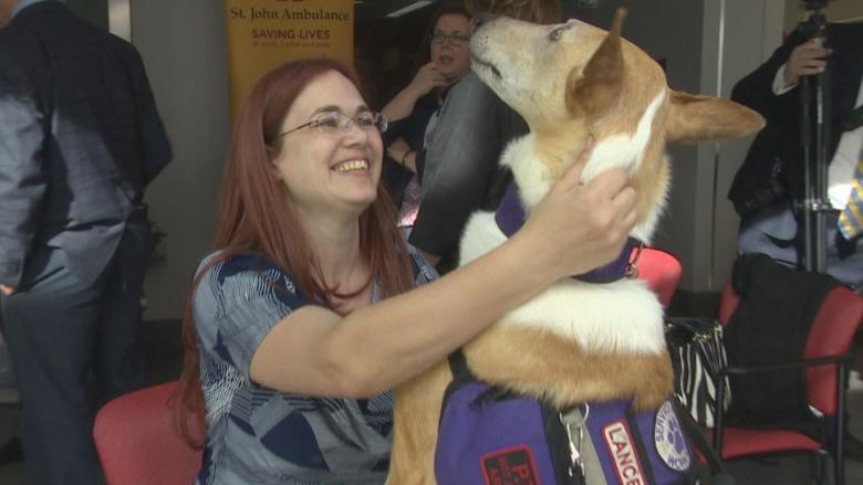 Alberta boosts funding to improve access to trained service dogs