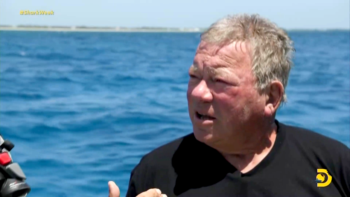 90-year-old William Shatner conquers his fear of sharks by swimming with them - Yahoo Entertainment