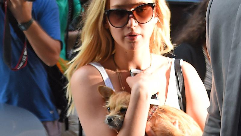 Jennifer Lawrence and her dog in New York (Photo by Josiah Kamau/BuzzFoto via Getty Images)