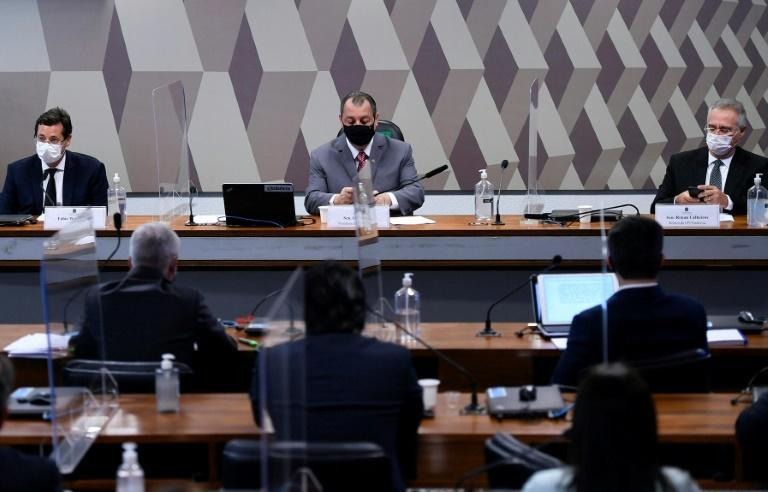 Far from the staid affair, the Brazilian senate probe into the response to the Covid-19 pandemic has been flush with insults, arguments, and episodes of general rowdiness