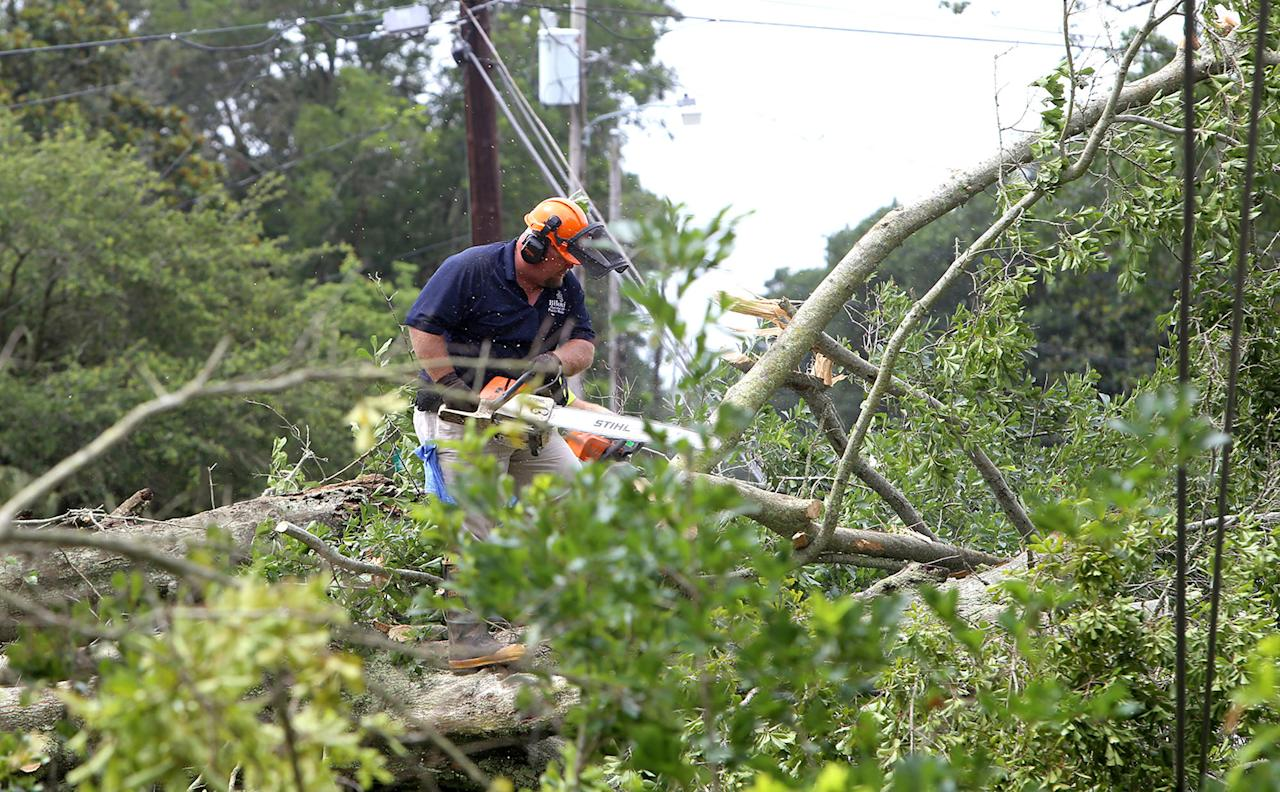 <p>Biloxi crews work to clear a downed tree from power lines on Rich Avenue on Wednesday, June 21, 2017 in Mississippi. The Mississippi Gulf Coast felt the effect of Tropical Storm Cindy for most of the day. (Photo: Tim Isbell/Biloxi Sun Herald/TNS via Getty Images) </p>