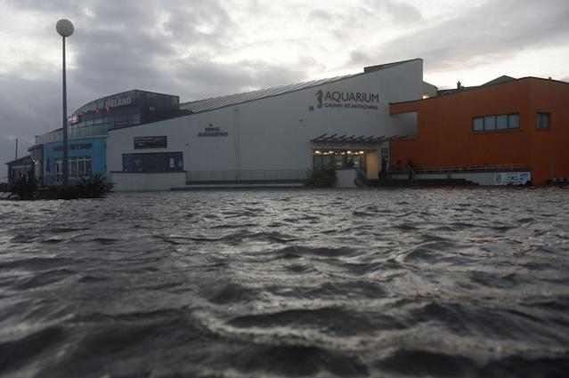 <p>The Galway Atlantaquaria National Aquarium of Ireland building is seen submerged in floodwater during Storm Ophelia in Galway, Ireland, Oct.16, 2017. (Photo: Clodagh Kilcoyne/Reuters) </p>