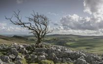 """<p> Stunning views and beautiful stone buildings are the crown jewels to this Yorkshire Dales village, and when December comes around it is host to the original Dickensian festival.</p><p><strong>Follow Country Living on <a href=""""https://www.instagram.com/countrylivinguk/"""" rel=""""nofollow noopener"""" target=""""_blank"""" data-ylk=""""slk:Instagram"""" class=""""link rapid-noclick-resp"""">Instagram</a>.</strong><br></p>"""