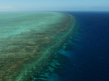 Loss of coral reefs would double coastal flood damage, say researchers