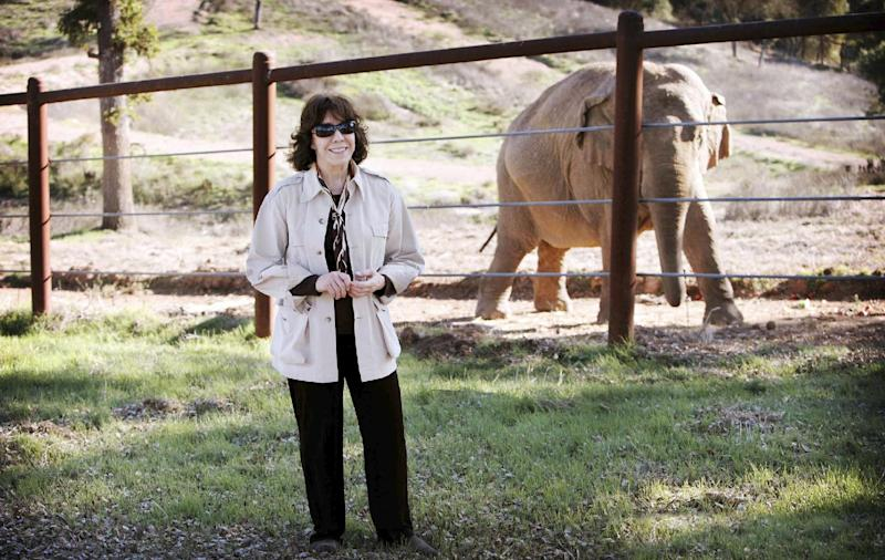 """This undated publicity photo released by courtesy of HBO shows narrator, Lily Tomlin, in the documentary film, """"An Apology to Elephants."""" The film is an unabashed polemic, calling for improved treatment of elephants in zoos and an end to the use of the animals as entertainment, which the film contends must invariably involve abuse.  (AP Photo/HBO, Lisa Jeffries/pawsweb.org)"""