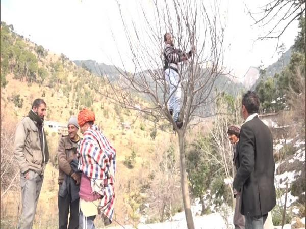 Visuals from J-K's Udhampur (Photo/ANI)