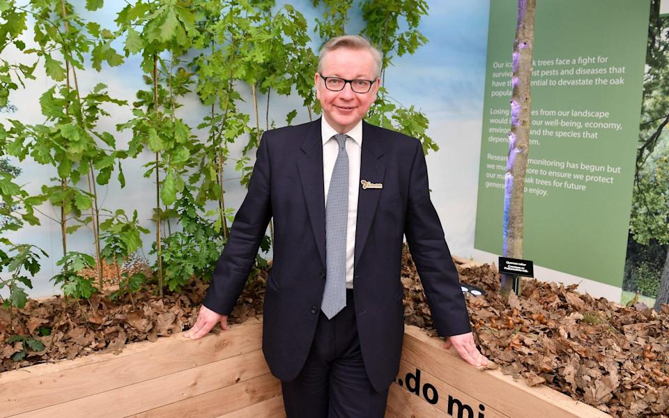 Michael Gove - Jeff Spicer/Getty