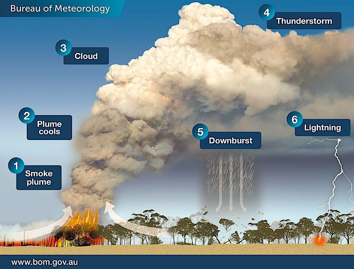 The bushfires in Australia are so big they're generating their own weather — 'pyrocumulonimbus' thunderstorms that can start more fires