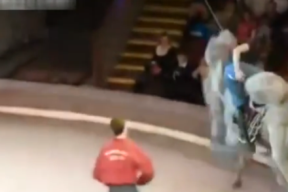Woman splits her trousers riding a camel at a circus in Russia
