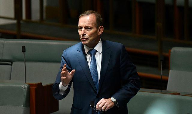 Tony Abbott: Ex-Australian PM 'keen to help' - but trade role criticism mounts after alleged homophobic comments