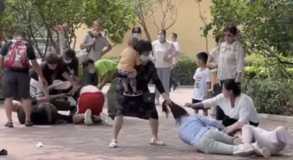 Footage of the violent brawl at a Chinese zoo showing a woman holding a child pulling another woman's hair.