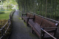 Empty benches along bamboos of the Japanese-inspired water garden of Claude Monet's house, French impressionist painter who lived from 1883 to 1926, wait ahead of the re-opening, in Giverny, west of Paris, Monday May 17, 2021. Lucky visitors who'll be allowed back into Claude Monet's house and gardens for the first time in over six months from Wednesday will be treated to a riot of color, with tulips, peonies, forget-me-nots and an array of other flowers all competing for attention. (AP Photo/Francois Mori)