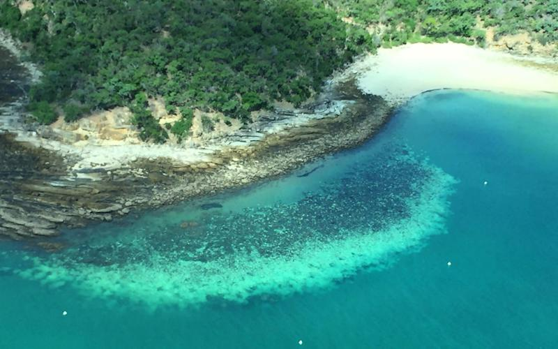 Record sea temperatures had caused the third mass bleaching of the reef system - JAMES COOK UNIVERSITY AUSTRALIA/AFP via Getty Images