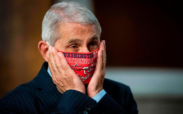 Dr Anthony Fauci, director of the National Institute for Allergy and Infectious Diseases - AL DRAGO/AFP via Getty Image