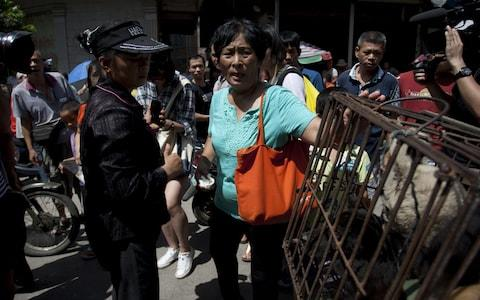 An activist rescues a dog at the Yulin dog meat festival in China - Credit: AFP/AFP