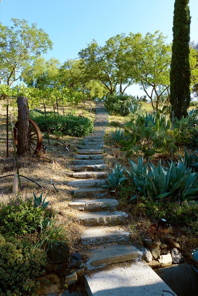 <p>Emamian says he'd encourage someone looking to open a sober living facility to consider the property. It has everything for that purpose – a serene atmosphere, five homes and lots of privacy in Malibu.</p><p><i>(Photo: Total Agent)</i><br></p>