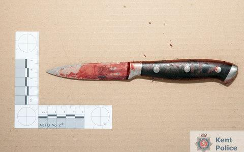The knife used to murder Molly McLaren - Credit: PA