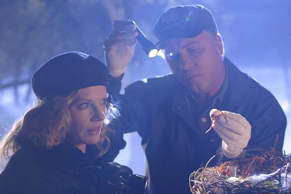 """Grissom and Catherine (Marg Helgenberger) work a crime scene backward, starting with the gruesome discovery of a human eyeball in a raven's nest. (""""Got Murder"""" 1/16/2003, Season 3)"""