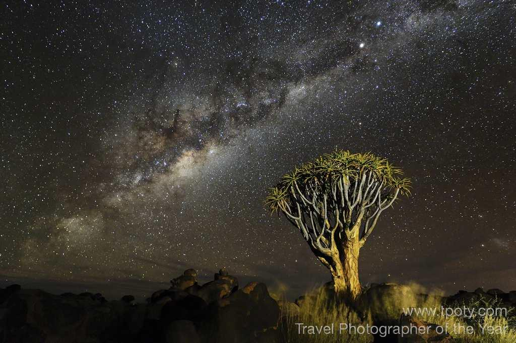Namib desert, Namibia <br><br>Marsel van Oosten, Netherlands<br><br>Camera: Nikon D3S <br><br>Winner, Wild Planet portfolio<br><br>Marsel van Oosten's stunning images of the Namibian night sky won the Dutch photographer the Wild Planet portfolio category, and a prize of a tailormade trip to Kenya with adventure travel experts Explore, plus Adobe Photoshop CS6 software.