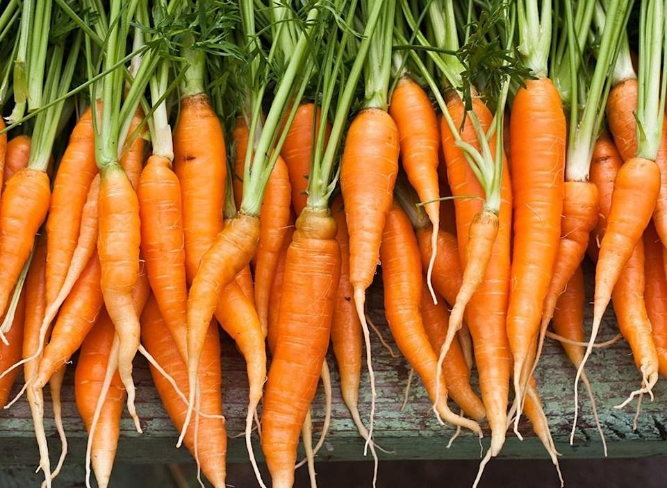 """<span>This is actually true, but you'd have to eat <em>a lot</em> of carrots for it to happen. According to the <a href=""""http://scienceline.ucsb.edu/getkey.php?key=2218"""" rel=""""nofollow noopener"""" target=""""_blank"""" data-ylk=""""slk:University of California, Santa Barbara"""" class=""""link rapid-noclick-resp"""">University of California, Santa Barbara</a>, carrots are rich in beta-carotene and if you consume too much, the excess beta-carotene enters the bloodstream where it's not properly broken down. Instead, it is deposited in the skin, which leads to an orange skin discoloration called carotenemia. </span> <span>It's a common and harmless condition that typically affects infants when they begin eating solid foods, since carrots are a popular choice among new parents. </span><span>The good news is, your body will eventually break down the excess beta-carotene, and your skin will return to its normal color. And for an important myth tied to current times that needs debunking, check out <a href=""""https://bestlifeonline.com/covid-vaccine-not-prevent-infection/?utm_source=yahoo-news&utm_medium=feed&utm_campaign=yahoo-feed"""" rel=""""nofollow noopener"""" target=""""_blank"""" data-ylk=""""slk:This is the Biggest Myth About the COVID Vaccine You Need to Stop Believing"""" class=""""link rapid-noclick-resp"""">This is the Biggest Myth About the COVID Vaccine You Need to Stop Believing</a>. </span>"""