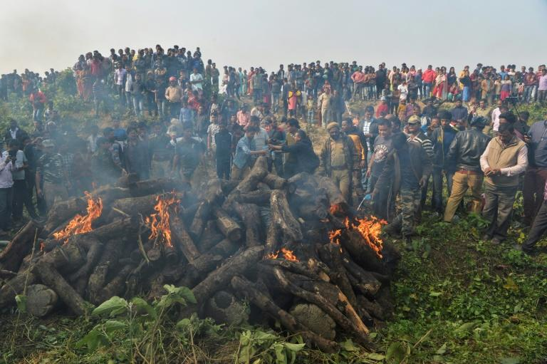 Logs were piled up around the bodies of the dead elephants and set alight