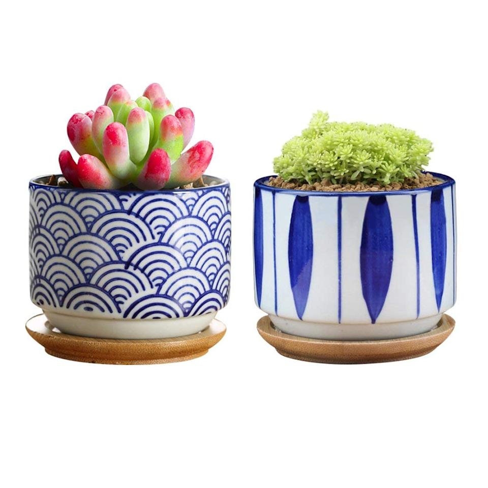 "<strong><h3>Amazon</h3></strong><br>Not only does the mega-site boast a colorful offering of <a href=""https://www.amazon.com/Mkono-Ceramic-Hanging-Planter-Succulent/dp/B0796NVNXC"" rel=""nofollow noopener"" target=""_blank"" data-ylk=""slk:pots"" class=""link rapid-noclick-resp"">pots</a>, <a href=""https://www.amazon.com/GeLive-Elephant-Ceramic-Succulent-Planter/dp/B078SPSDHT"" rel=""nofollow noopener"" target=""_blank"" data-ylk=""slk:planters"" class=""link rapid-noclick-resp"">planters</a>, and <a href=""https://www.amazon.com/b/ref=s9_acss_bw_cg_harmonyc_4d1_w?node=128061011&pf_rd_m=ATVPDKIKX0DER&pf_rd_s=merchandised-search-3&pf_rd_r=PA5XQE829AC7ETT2F3Y0&pf_rd_t=101&pf_rd_p=89ea7ab2-10f6-4cc3-96fd-1b2c7c366b64&pf_rd_i=2972638011"" rel=""nofollow noopener"" target=""_blank"" data-ylk=""slk:tools"" class=""link rapid-noclick-resp"">tools</a>, but it also sells an even more impressive array of live <a href=""https://www.amazon.com/Shop-Succulents-Purrr-FECT-Plant-Toxic/dp/B07HBCRKSP"" rel=""nofollow noopener"" target=""_blank"" data-ylk=""slk:green goods"" class=""link rapid-noclick-resp"">green goods</a> to fill and tend to them with. From <a href=""https://www.amazon.com/Shop-Succulents-Premium-Succulent-Collection/dp/B01LG1DJBS"" rel=""nofollow noopener"" target=""_blank"" data-ylk=""slk:succulents"" class=""link rapid-noclick-resp"">succulents</a> to <a href=""https://www.amazon.com/Fiddle-Leaf-Fig-Gallon-Pots/dp/B079T8G9DJ/ref=sr_1_2_sspa"" rel=""nofollow noopener"" target=""_blank"" data-ylk=""slk:fiddle leaf figs"" class=""link rapid-noclick-resp"">fiddle leaf figs</a> and <a href=""https://www.amazon.com/9GreenBox-com-Zen001-Reflections-Juniper-Bonsai/dp/B00K57JJ96/ref=sr_1_6"" rel=""nofollow noopener"" target=""_blank"" data-ylk=""slk:bonsai trees"" class=""link rapid-noclick-resp"">bonsai trees</a>, Amazon's <a href=""https://www.amazon.com/s/ref=nb_sb_noss?url=search-alias%3Dlawngarden&field-keywords="" rel=""nofollow noopener"" target=""_blank"" data-ylk=""slk:gardening section"" class=""link rapid-noclick-resp"">gardening section</a> wins the online plant-shopping award for most <a href=""https://www.amazon.com/b/?node=3745941&ref_=Oct_CateC_3480662011_1&pf_rd_p=0fcb429f-7ff9-5832-86ba-056bae6b9c39&pf_rd_s=merchandised-search-3&pf_rd_t=101&pf_rd_i=3480662011&pf_rd_m=ATVPDKIKX0DER&pf_rd_r=TSAYBPJYWH2WEGCQZ0AY&pf_rd_r=TSAYBPJYWH2WEGCQZ0AY&pf_rd_p=0fcb429f-7ff9-5832-86ba-056bae6b9c39"" rel=""nofollow noopener"" target=""_blank"" data-ylk=""slk:ample, unique, and affordable finds"" class=""link rapid-noclick-resp"">ample, unique, and affordable finds</a>.<br><br>Visit <a href=""https://www.amazon.com/b/ref=s9_acss_bw_cg_harmonyc_2a1_w?node=3480662011&pf_rd_m=ATVPDKIKX0DER&pf_rd_s=merchandised-search-3&pf_rd_r=BE25Y63SJP31WTZD7D31&pf_rd_t=101&pf_rd_p=89ea7ab2-10f6-4cc3-96fd-1b2c7c366b64&pf_rd_i=2972638011"" rel=""nofollow noopener"" target=""_blank"" data-ylk=""slk:Amazon"" class=""link rapid-noclick-resp"">Amazon</a>.<span class=""copyright"">Photo: Courtesy of Amazon.</span>"