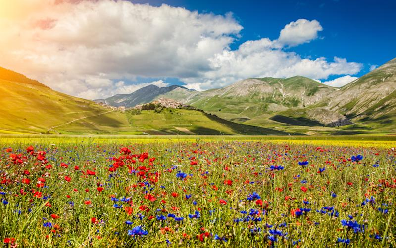 Veduta del Piano Grande, Castelluccio di Norcia, Umbria (Photo: bluejayphoto via Getty Images)