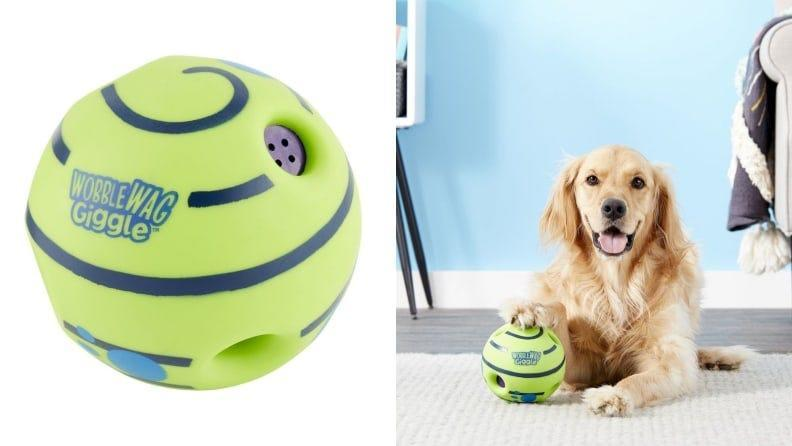 By making laughing noises and spinning, your pet will stay super busy.