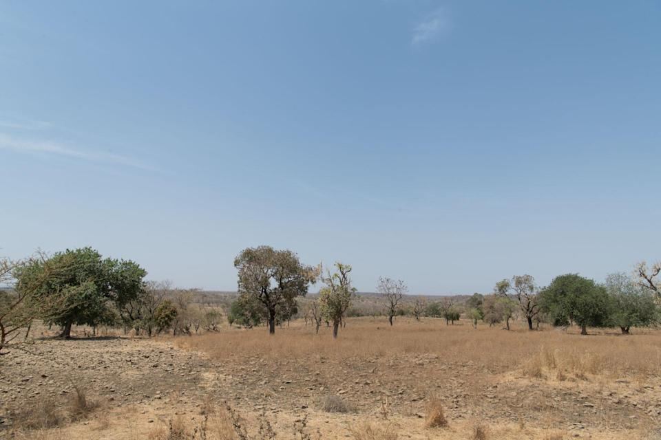 A landscape in West Gonder, Ethiopia, where the project will take place ( Maheder Haileselassie/Tree Aid/PA)