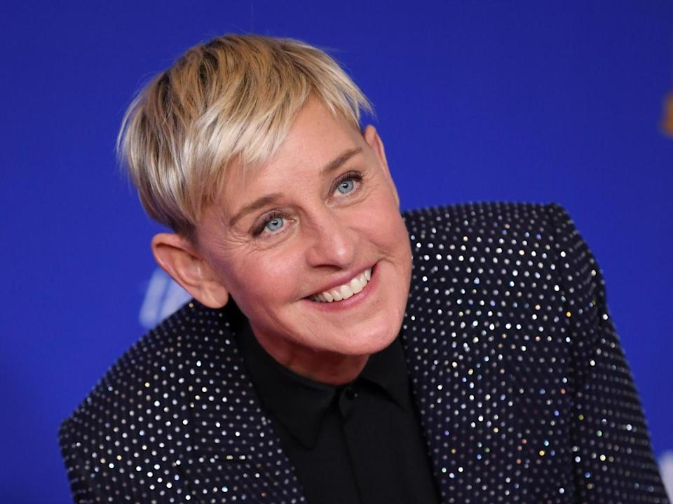 DeGeneres has been trailed by career woe after career woe this year following numerous allegations of 'mean' behaviour (Rex Features)