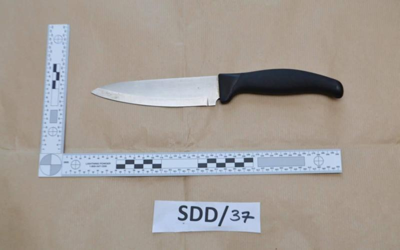 a knife, shown at Woolwich Crown Court, relating to the trial of Sneha Chowdhury and Mohiussunnath Chowdhury. - PA