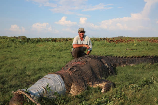 Animal expert shares picture of monster crocodile he caught