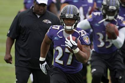 Ray Rice (USA Today Sports)