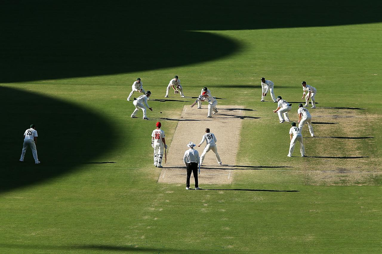 ADELAIDE, AUSTRALIA - NOVEMBER 25: All eleven Tigers fielders close in on the batsmen late in the day during day four of the Sheffield Shield match between the South Australia Redbacks and the Tasmania Tigers at Adelaide Oval on November 25, 2013 in Adelaide, Australia.  (Photo by Morne de Klerk/Getty Images)