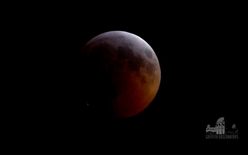 Meteorite strikes moon during full lunar eclipse
