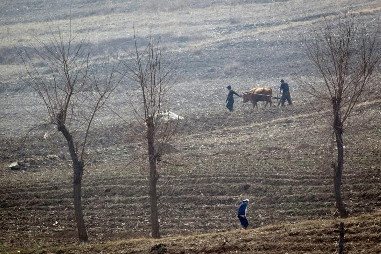 North Korea, which is under multiple sets of international sanctions over its nuclear weapons and ballistic missile programmes, has long struggled to feed itself, suffering chronic food shortages