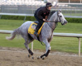 FILE - Kentucky Derby entrant Tapit, with exercise rider Jon Ferriday up, works out along the backstretch at Churchill Downs in Louisville, Ky., in this April 29, 2004, file photo. Only eight greys have won the past 90 runnings of the Kentucky Derby horse race. According to historians and experts, there are just fewer of them in the thoroughbred population compared to more traditional chestnut, bay, brown and black horses. But with light grey Tapit siring Essential Quality and others, horses of that color could be making a comeback at the elite level of racing.(AP Photo/Timothy D. Easley, File)