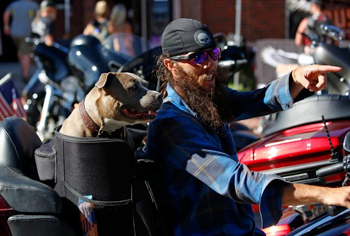It's not just humans who take in the sights at the Sturgis Rally.