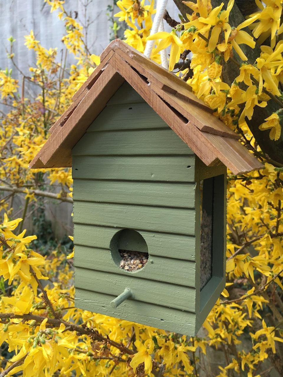 """<p>If you're looking for garden ideas for wildlife, you could install a bird feeder, bird bath or bird house. More birds attracted to your outdoor space will also mean more chances of listening to the sound of birds singing, which is great for your wellbeing. In fact, <a href=""""https://www.housebeautiful.com/uk/garden/a27452863/kate-humble-sounds-of-spring-campaign/"""" rel=""""nofollow noopener"""" target=""""_blank"""" data-ylk=""""slk:research shows that listening to the sound of birds"""" class=""""link rapid-noclick-resp"""">research shows that listening to the sound of birds</a> can help lower stress and fatigue, as well as helping to combat <a href=""""https://www.housebeautiful.com/uk/garden/plants/a21744447/flowers-to-boost-mood-mind-rhs-garden/"""" rel=""""nofollow noopener"""" target=""""_blank"""" data-ylk=""""slk:anxiety"""" class=""""link rapid-noclick-resp"""">anxiety</a>.</p><p>You could buy one (shop a selection at the <a href=""""https://go.redirectingat.com?id=127X1599956&url=https%3A%2F%2Fshopping.rspb.org.uk%2Fbird-feeders%2F&sref=https%3A%2F%2Fwww.housebeautiful.com%2Fuk%2Fgarden%2Fdesigns%2Fg28%2Fgarden-ideas-on-a-budget%2F"""" rel=""""nofollow noopener"""" target=""""_blank"""" data-ylk=""""slk:RSPB"""" class=""""link rapid-noclick-resp"""">RSPB</a>) or, if you're looking for a cheaper way, wash out old tin cans (from soup and baked beans), then paint, fill with bird seed, and hang in the garden for your own homemade bird feeder.</p><p><strong>Pictured: </strong>Bird feeder in Moorland Green Wood Paint, <a href=""""https://thorndown.co.uk/product/moorland-green-wood-paint/"""" rel=""""nofollow noopener"""" target=""""_blank"""" data-ylk=""""slk:Thorndown Paints"""" class=""""link rapid-noclick-resp"""">Thorndown Paints</a></p>"""