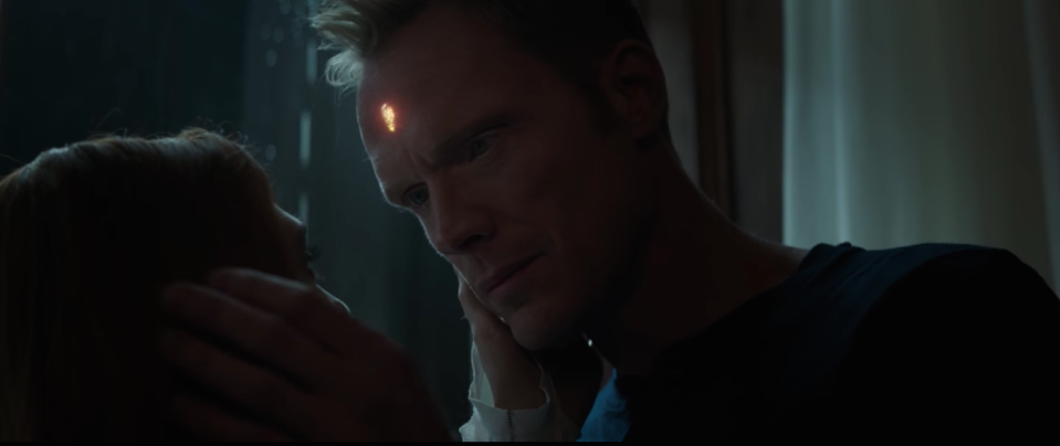Paul Bettany's Vision shares a romantic moment with Scarlet Witch (Elizabeth Olsen)