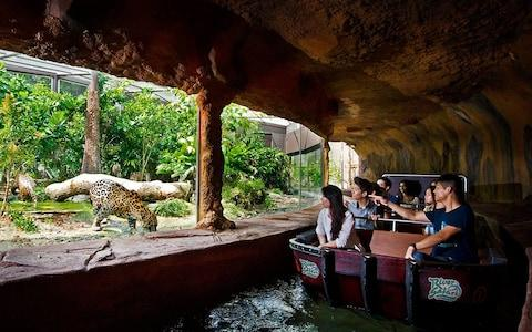 river safari, singapore