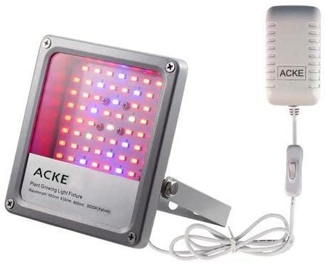 """<p>The low-heat, waterproof <span>Acke LED Grow Lights</span> ($26, originally $40) promote growth in your <a href=""""https://www.popsugar.com/home/How-Grow-Basil-From-Cuttings-43935645"""" class=""""link rapid-noclick-resp"""" rel=""""nofollow noopener"""" target=""""_blank"""" data-ylk=""""slk:cuttings"""">cuttings</a> and seedlings. It's also angle adjustable, coming with a rotating bracket so that you can place it in different areas of your room. </p>"""