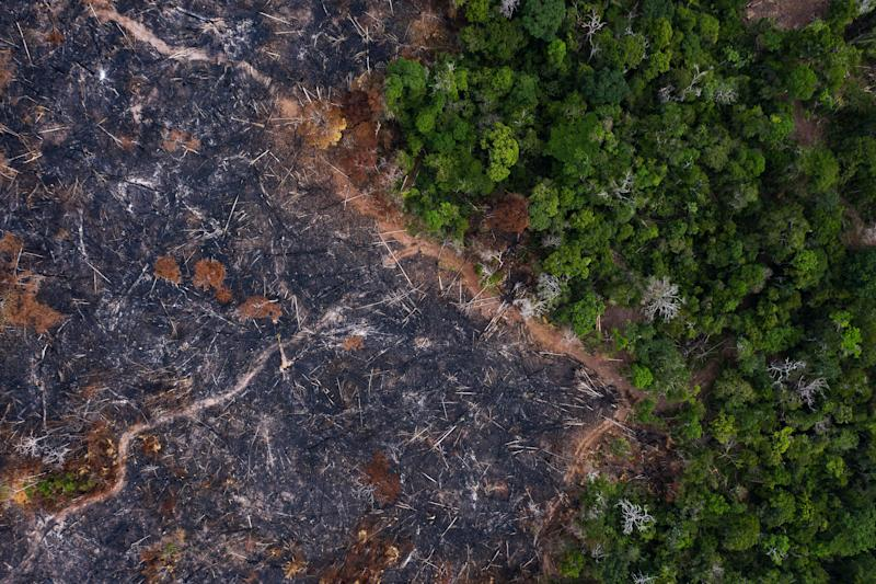 A burned area of the Amazon rainforest in Prainha in the Brazilian state of Para on Nov. 23, 2019. After a rash of fires linked to increased deforestation in 2019, destruction has continued in the early months of 2020. (Photo: AP Photo/Leo Correa)