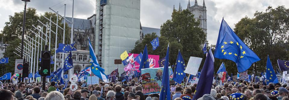 Crowd of protesters with flags during the historic Brexit day in London. Anti-Brexit activists campaign for a second Brexit referendum as the UK's October 31 departure date from the EU draws closer. (Photo by Rahman Hassani / SOPA Images/Sipa USA)